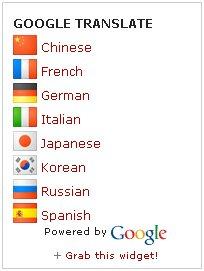 google translate mini flags vertical